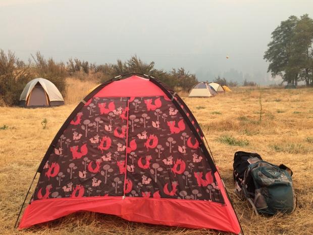Foxy Tent